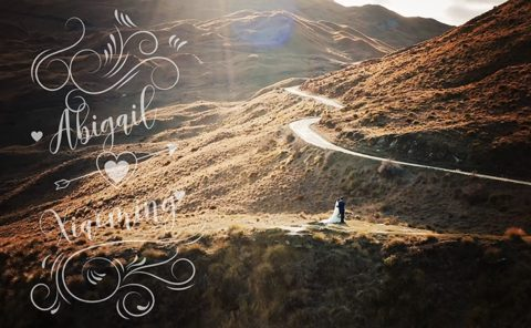 Abbi and Shawn Wedding Video
