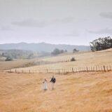 Olivia & Thomas - Kauri Bay Boomrock Wedding